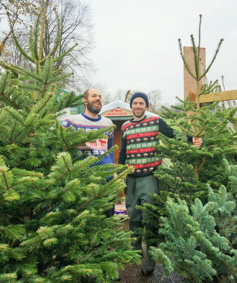 Ali & Joe\'s Christmas Trees: back in Bristol this December by ...