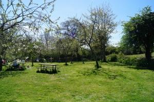 Grimsbury picnic
