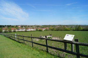 Grimsbury view