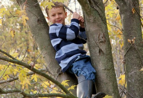 stonebury_learning_climb_tree_boy