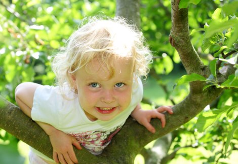 stonebury_learning_climb_tree_girl