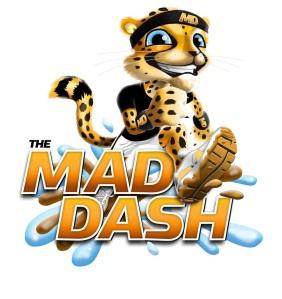 Mad Dash Cheetah (2)
