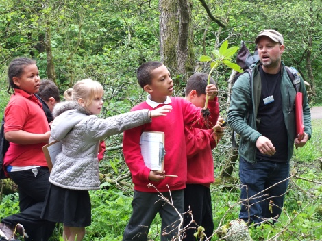 BioBlitz 2015 children
