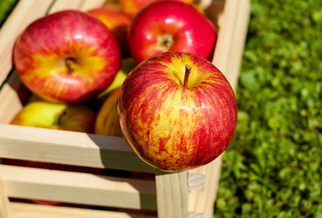 apple-1589874_960_720